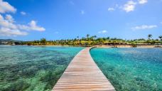 The Caribbean to Unique Zealand: Top emerging destinations around the world, per Tripadvisor