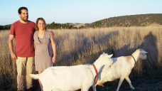Ditching the corporate grind to farm goats and make cheese