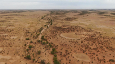 It may look like wasteland, but this massive station is an ecological treasure trove