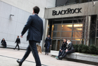 BlackRock's Rick Rieder says the world's largest asset manager has 'began to dabble' in bitcoin