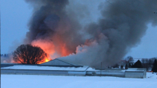 Aylmer, Ont. dairy farm fire leaves 100 cows dead, $5M in damages