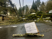 Snowstorm brings 'most dangerous instances' seen by utility