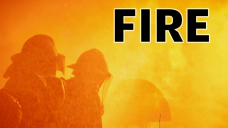 Fire marshal investigating after Cape Girardeau fire kills 10 horses
