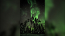 IN PICTURES: Aurora Borealis lights up Manitoba sky over the weekend