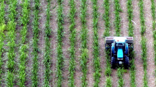 Farmers say lowering carbon 'ethically proper', Nationals call for farm exemptions