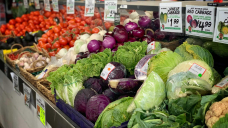 $45 million in lost plants: Grocery prices could soar as Australian food supply shrinks
