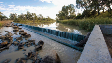 No more farm water for the environment as Murray-Darling Water Efficiency Program canned