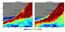 Fish and shellfish 'walkout' as ocean heatwave grips SA's east, south coast