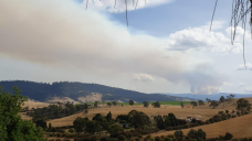 Planned forest burning on the nose of beer, wine producers