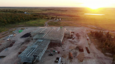 Queensland's first abattoir in more than 20 years in final stages of construction