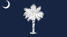 Palmetto satisfaction: South Carolina state flag sparks debate