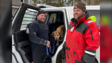 Warm-hearted rescuers brave frigid N.S. lake for stranded dog