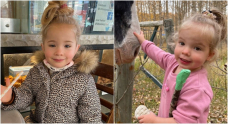Mounties say anyone helping hide missing Alberta girls could face charges