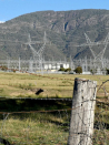 Wind Farm Commissioner's role expanded as high voltage clash looms