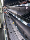 Floods signal crop losses, immediate-time length price rises and empty supermarket shelves for now