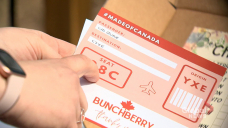 Bunchberry: A local giftbox company 'Made of Canada'