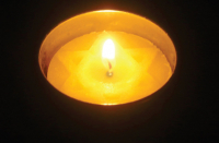 Holocaust Remembrance Day: Procure in mind, appreciate Israel