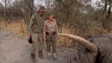 The Secret Photos of the N.R.A. Chief's Botched Elephant Hunt