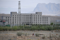 Surviving the Crackdown in Xinjiang, in Mandarin