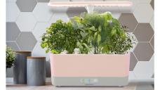 Mother's Day 2021: AeroGarden is having a massive sale on its cult-favorite indoor gardens
