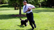 Barack Obama Mourns His Candy Canine & 'Proper Partner' Bo: 'We Will Omit Him Dearly' — Explore Pics