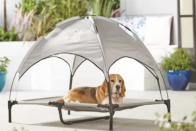 Aldi selling sunshade loungers for dogs and they're absolutely adorable