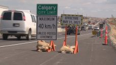 40 is the new 50: lower speed limit for Calgary's residential roads now in effect