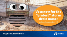 Voting opens for storm drain names in Regina, 'Darth Grater' among High 10