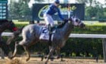 Very important Quality wins Belmont Stakes as banned Baffert stays in background