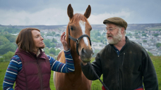 The 'surreal' true story behind uplifting film Dream Horse