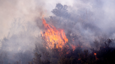 'You can see it from miles away': Telegraph, Mescal fires prompt evacuations, road closures in Arizona