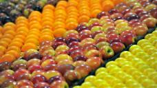 SA fruit fly crisis continues to grow
