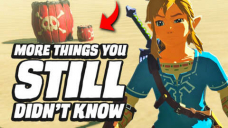 29 MORE Issues You STILL Didn't Know In Zelda Breath Of The Wild
