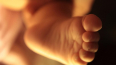 Extra midwives announced for Vic baby boom