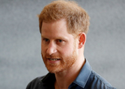 Bombshell guide? Prince Harry to pen 'wholly honest' and  'intimate' memoir