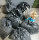 Dagga bust most up-to-date: Police arrest suspects, recover R300 000 in drugs
