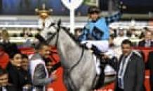 'Reckless fraudster' Jorge Navarro admits to global racehorse doping scheme