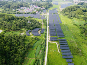 Trina Solar deploys 100MW of agricultural solar in China