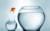 My big jump: Sukhinder Singh Cassidy's CEO journey