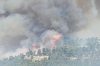Israel considering requesting international aid as wildfire spreads