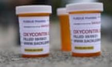 Former Purdue Pharma chair denies responsibility for US opioid crisis