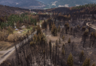 Canada's wildfires, extreme heat bring environmental issues to election campaign
