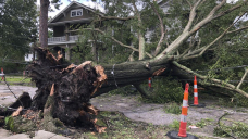The Most up-to-date: Modern Orleans could be without power for weeks