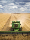 Blueprint to bring in overseas workers for WA's supreme-ever grain harvest falls over
