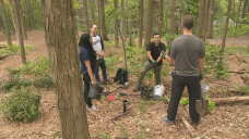 Montrealers celebrate National Tree Day with tree-planting activity on Mount Royal