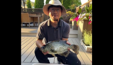 Angler about to cook crappie discovers 'monster' could be record