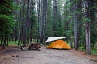 Manitoba seeking feedback on campsite reservations